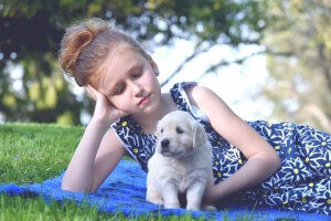english cream golden retriever puppies loving girl